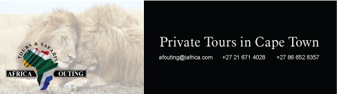 Africa Outing Tours
